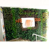 Artificial Green wall 100x100.jpg