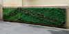 Artificial Green wall_01 100.jpg