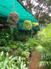 Chembur Nursery_01_small photo.jpg