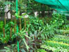 Chembur Nursery_03_small photo.jpg