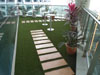 Terrace_small photo.jpg