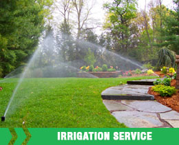 Ankur Nurseries Irrigation Services