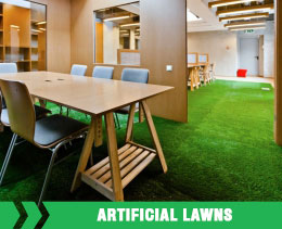 Artifical Lawns
