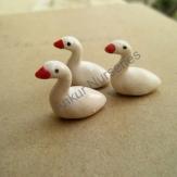 Birds Type 5