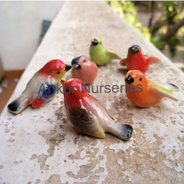 Birds Type 1