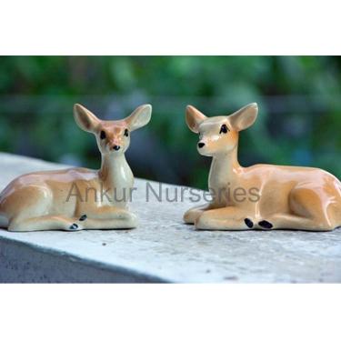 Deer (sitting)