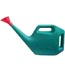 Watering Can Type 1