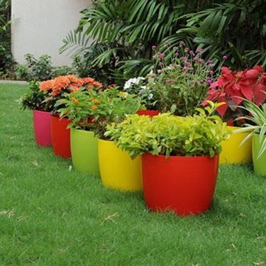 Plastic Round Planters - Coloured, 5.3, 9 & 11 inches