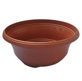 Plastic Pots - Corfu