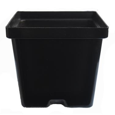 Plastic Square Pots - Type 4